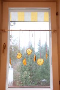 Joulukoristeet ikkunassa